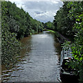 SJ8746 : Trent and Mersey Canal in Stoke-on-Trent by Roger  Kidd