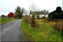 H6058 : Tullylinton Road, Tullylinton by Kenneth  Allen