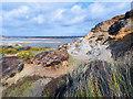 SZ1690 : Erosion on Hengistbury Head by Des Blenkinsopp