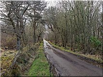 NH6751 : End of the road at Taindore by valenta