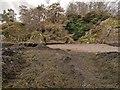 NH6852 : Shoreline below Craigiehowe by valenta