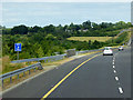 S5449 : M9 Northbound near Bennettsbridge by David Dixon