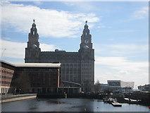 SJ3390 : Princes Dock, towards the Royal Liver Building by John Slater