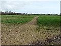 TR2143 : Footpath across a field by John Baker