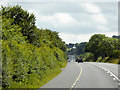 S3200 : N25 Westbound between Lemybrien and Downey's Cross Roads by David Dixon