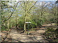 TQ2888 : Paths in Queen's Wood, Highgate by Malc McDonald
