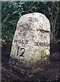 TF9822 : Old Milestone by CW Haines