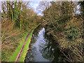 SD4757 : Lancaster Canal near Lower Burrow by David Dixon
