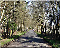 TQ0084 : Black Park Road near Fulmer by Stephen Richards