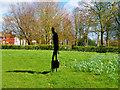 SJ5293 : Silent Soldier, Sutton Park by David Dixon