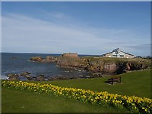 NT6779 : Looking across the Glebe to Dunbar Leisure Pool by Jennifer Petrie