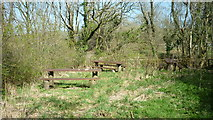 SS6644 : Picnic Area - A39 near Parracombe by Barrie Cann