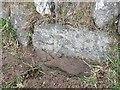 SX5173 : Old Guide Stone at Warren's Cross by Mark Fenlon