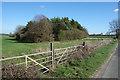 SP3015 : Homefield Spinney by Des Blenkinsopp