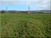 NS3977 : Uneven ground at Pillanflatt by Lairich Rig