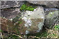 SE0456 : Benchmark on stone in wall of Barden Road by Roger Templeman