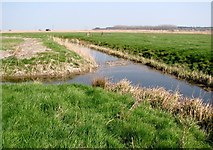 TM4599 : Confluence of drainage ditches in the Haddiscoe Marshes by Evelyn Simak