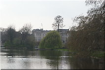 TQ2979 : View of Buckingham Palace from St. James's Park by Robert Lamb