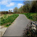 ST1189 : Towards a bend in the Aber Cycleway, Abertridwr by Jaggery