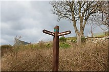 NO4202 : Fife Coastal Path sign, Lower Largo by Bill Kasman