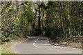 TQ3136 : Wallage Lane by Peter Trimming