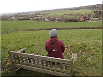 SO9969 : Bench overlooking the canal, Tardebigge by Rudi Winter