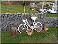 NO5402 : White bicycle as planter by Oliver Dixon