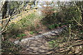 ST1485 : Rhymney Valley Ridgeway Walk below Twyn Garwa by M J Roscoe