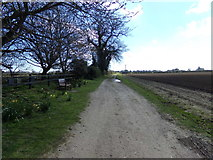 TM4899 : Angles Way Footpath to Market Lane by Adrian Cable