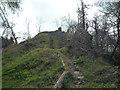SO4870 : Richards Castle (Motte) by Fabian Musto