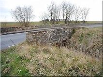 NO5101 : Bridge on the A917 by Richard Sutcliffe