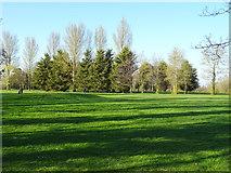 SJ4910 : Meole Brace Golf Course, Shrewsbury by JThomas