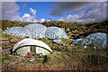 SX0454 : The Eden Project Biomes by Andy Stephenson