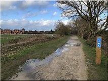 SP1953 : Former railway passing Stratford-upon-Avon Racecourse by David Robinson