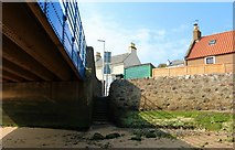NO4102 : Steps to harbour, Lower Largo by Bill Kasman