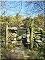 SH6169 : Metal stile between fields, Llanllechid by Meirion