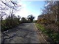 TM4474 : B1387 Walberswick Road, Blythburgh by Adrian Cable