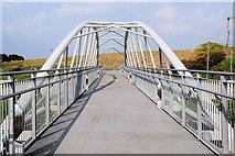 H4473 : Footbridge across the Strule River by Kenneth  Allen
