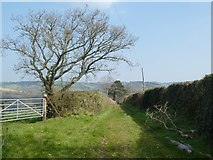 SX8290 : Footpath along old track to Shepherd's Ford by David Smith