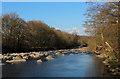 NZ0536 : River Wear near Wolsingham by Chris Heaton