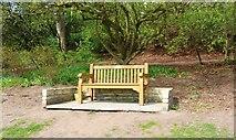 NO3901 : Bench seat by Bill Kasman