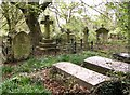 TG2408 : Burial plots in Rosary Cemetery by Evelyn Simak
