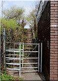 SO1110 : Kissing gate, Merthyr Road, Princetown by Jaggery