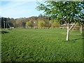 SO5074 : Linney Riverside Park (Ludlow) by Fabian Musto