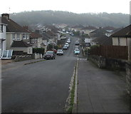 ST3090 : Poor visibility in the Graig Park area of Newport by Jaggery