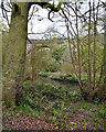 SP3677 : Banks of the River Sowe north of the railway viaduct, Coventry by Robin Stott