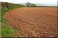 SX7759 : Tilled field by Copperthorn Cross by Derek Harper