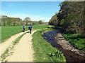 SN5747 : Ar lan Nant Creuddyn / On the banks of the Creuddyn stream by Alan Richards