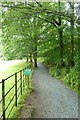 NY3701 : Path to the landing stage by DS Pugh