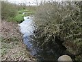 NZ1825 : Hummer Beck from the ford footbridge, Lutterington Lane by Christine Johnstone